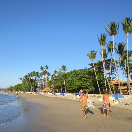 Guests walking on the beach with surfboards