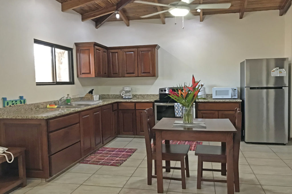 Kitchen area in the one bedroom apartment